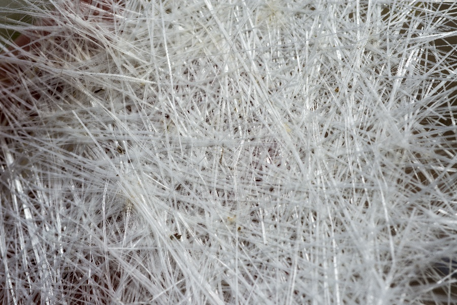 fibers in pultrusion